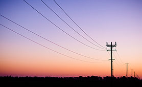 Electricity Distribution Lines