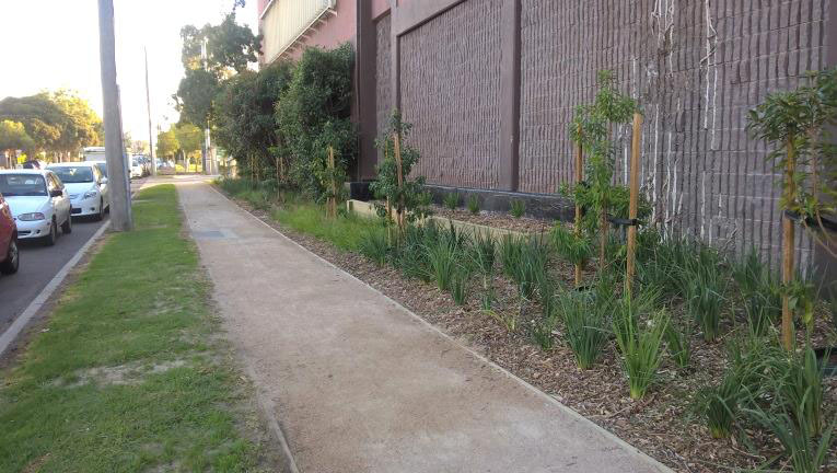 Mary Street landscaping