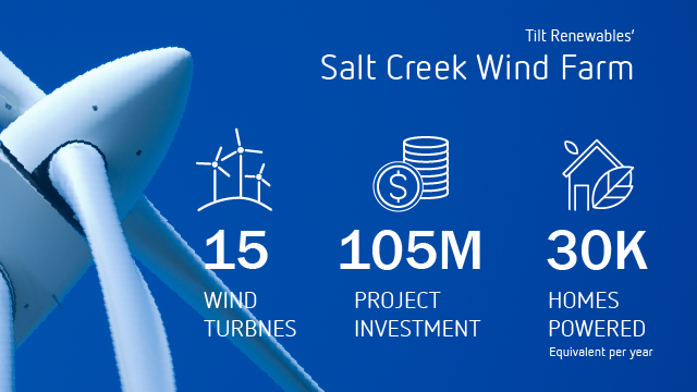 Salt Creek Infographic